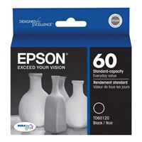 Epson T060120 Black Cartridge