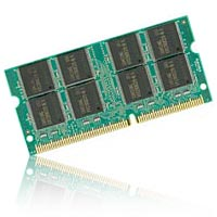 Micro Center 1GB DDR2-667/800 (PC-5300/6400) SO-DIMM Laptop Memory Module