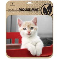Handstands Deluxe Eco Mouse Pad Kitten