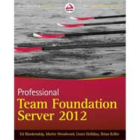 Wiley PROFTEAM FOUNDATION SERVE
