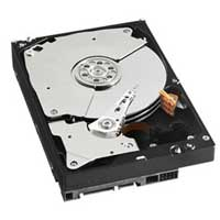 "WD 3TB 3.5"" Hard Drive Kit For Sentinel DX4000 WDBBDN0030HNCNA"