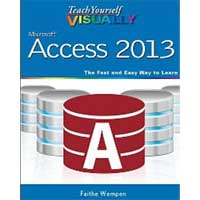 Wiley TY VISUALLY ACCESS 2013