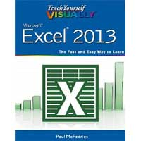 Wiley TY VISUALLY EXCEL 2013