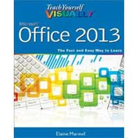 Wiley TY VISUALLY OFFICE 2013
