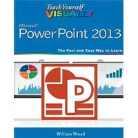 Wiley TY VISUALLY POWERPOINT
