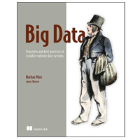 Manning Publications BIG DATA