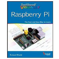 Wiley TY VISUALLY RASPBERRY PI