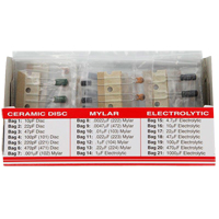 Elenco CAPACITOR KIT 100 PIECES