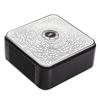 Polk Audio Camden Square Wireless Speaker