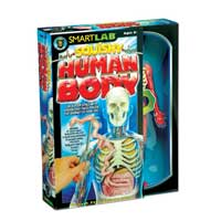 SmartLab Toys Squishy Human Body Toy Building Set