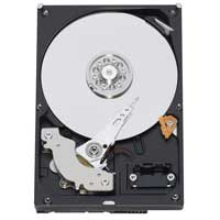 "WD RE3 250GB 7,200 RPM SATA 3.0Gb/s 3.5"" Internal Hard Drive WD2502ABYS - Bare Drive"