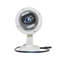 FosCam Wireless Outdoor Pan/Tilt IP Camera with Night Vision
