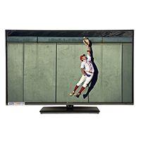 "Element 46"" Class Refurbished 1080p Roku Ready LED HDTV"