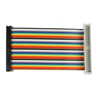 Cyntech GPIO Extension F/M GERT Cable (100mm)