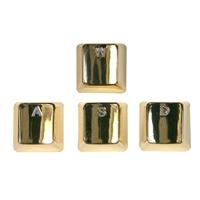 Bradychan Zinc Plated WASD Gold Keys