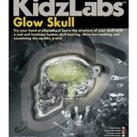Toysmith Glow Skull
