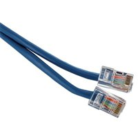IPSG 50' CAT 5E Cable-Blue