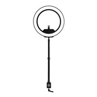 Namco Dragon Ball FighterZ (Xbox One)